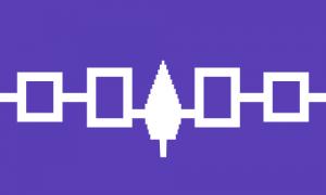 Флаг Ирокезов