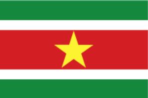 Флаг Суринама