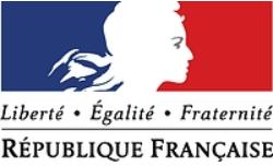 Флаг  лого правительства Франции (Марианна)
