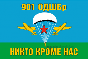 Флаг ВДВ 901 ОДШБр