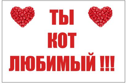 Флаг ТЫ КОТ ЛЮБИМЫЙ!!!