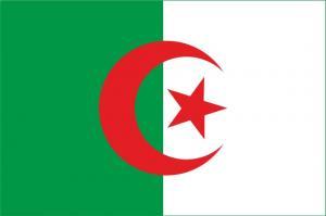 Флаг Алжира двусторонний