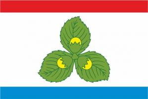 Флаг Краснознамеска