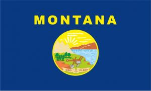 Флаг штата Монтана(США)