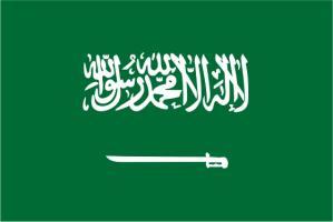 Флаг города Эр-Рияд