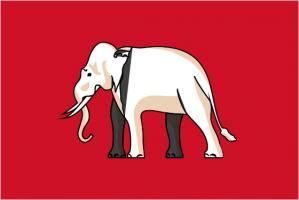 Флаг Сиамо(1855—1916 гг.)